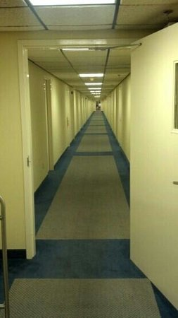 Holly Tree Resort: hallway