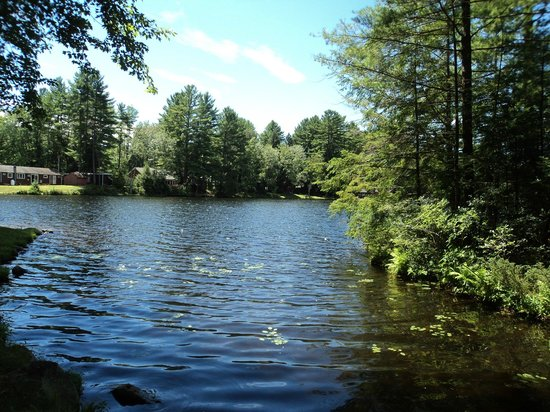 Kastner's Motel On The Lake: Part of Lake