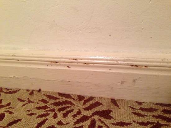 Balboa Inn : Mysterious red marks on moulding.