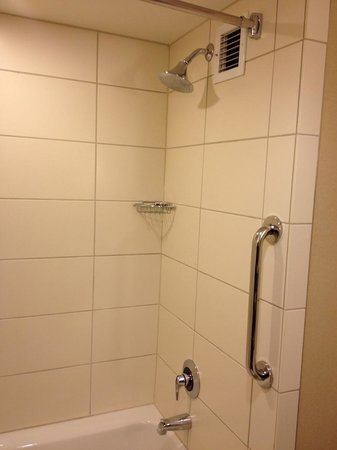 Macon Marriott City Center : Shower