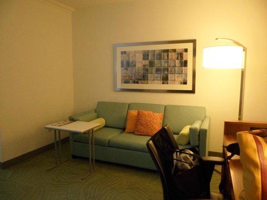 SpringHill Suites Newark Liberty International Airport: sofacama muy comodo