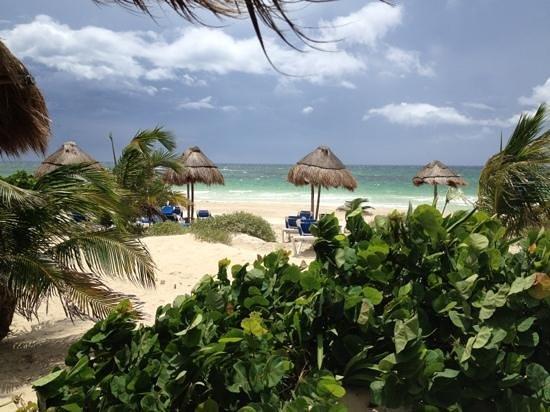 Almaplena Eco Resort & Beach Club: Vista desde habitación 5