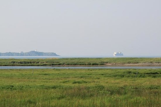 Castalia Marsh Retreat: View of the ferry and lighthouse from the deck of the Birdhouse.
