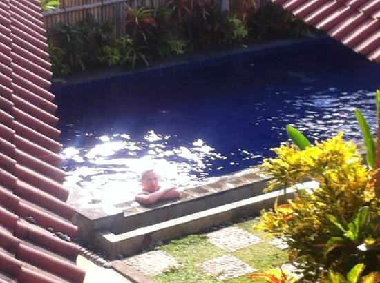 Depotrek Villas: Heerlijk zwembad. Goed onderhouden en niet chlorig