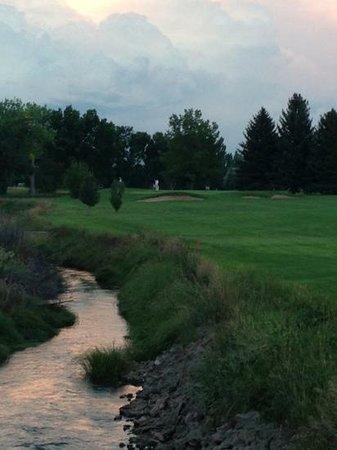 Collindale Golf Course: #8 par 3
