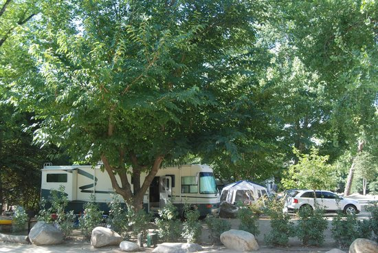 Camp James Campground: More Views of Campsites.