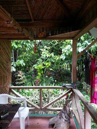 Zen Gardens: from the porch