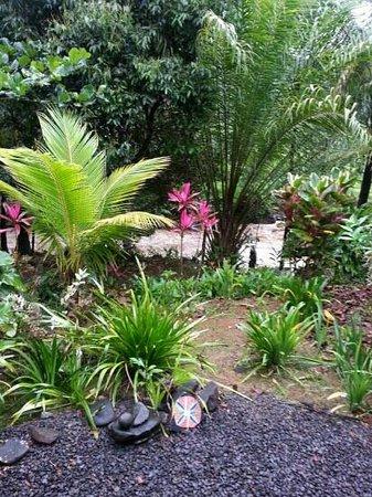 Zen Gardens : swollen river