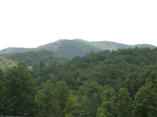 Enota Mountain Retreat : Panoramic view
