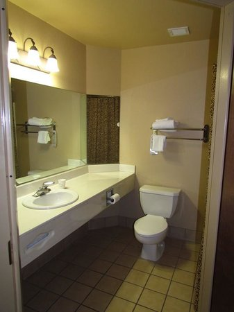The Grand Hotel at the Grand Canyon: Plain bathroom