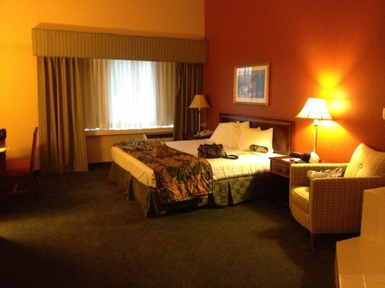 Hotel Mead & Conference Center: Whirlpool suite