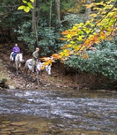 Cantrell Ultimate Rafting: Horseback Riding Adventures