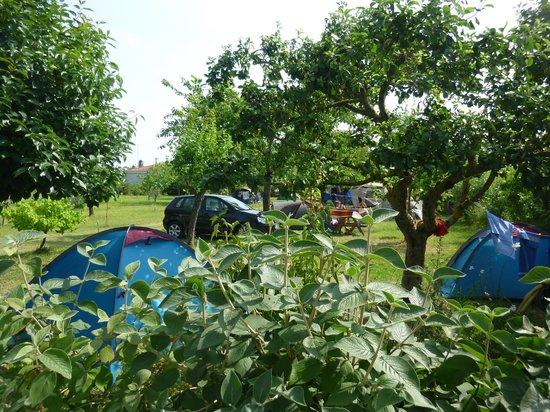 Aire Naturelle de Camping Le Verger : Campeurs du VERGER
