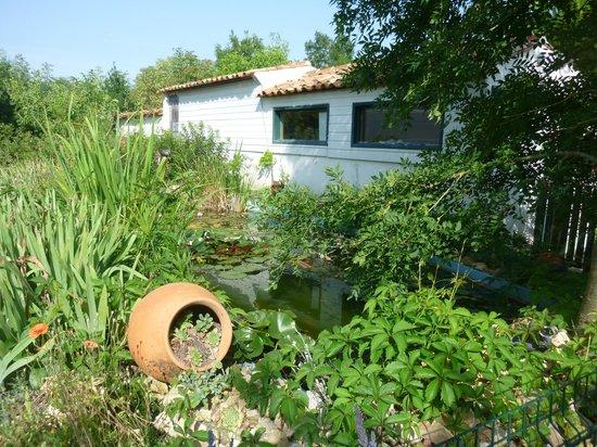 Aire Naturelle de Camping Le Verger : Le Bassin à Poissons à côté du bureau d'Accueil