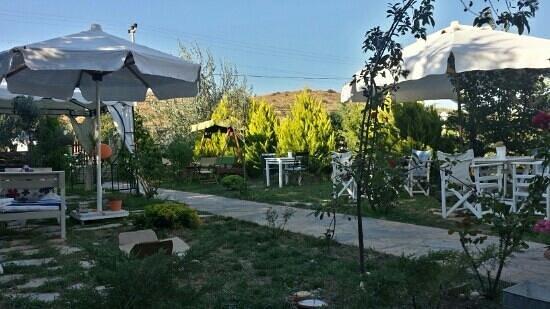 Ege Han otel bozcaada - Bahçesi