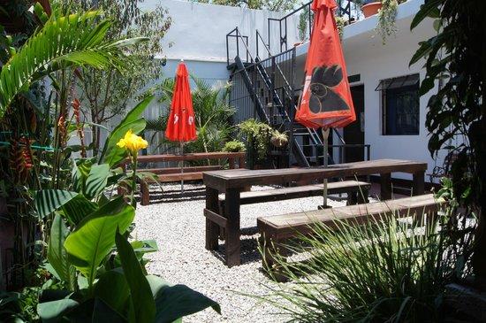Mananas Hotel: Patio @ Holistico Hostal