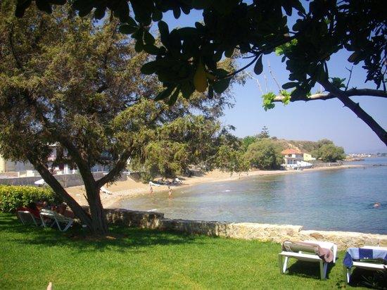 Panorama Hotel - Chania: coin vert côté plage