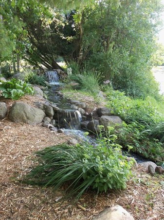 Willow Pond Bed, Breakfast and Events: Babbling WaterFall