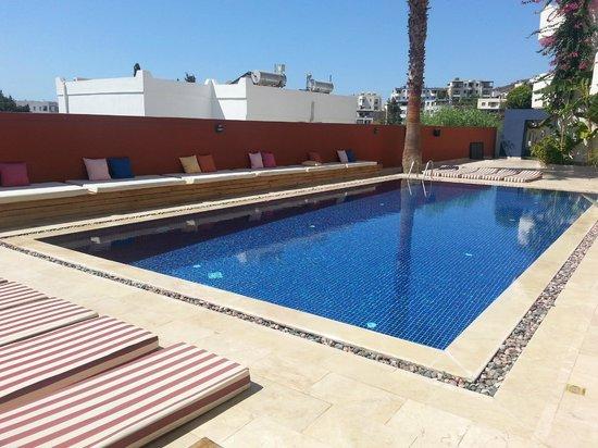 La Brezza Suite & Hotel: havuz manzaramız