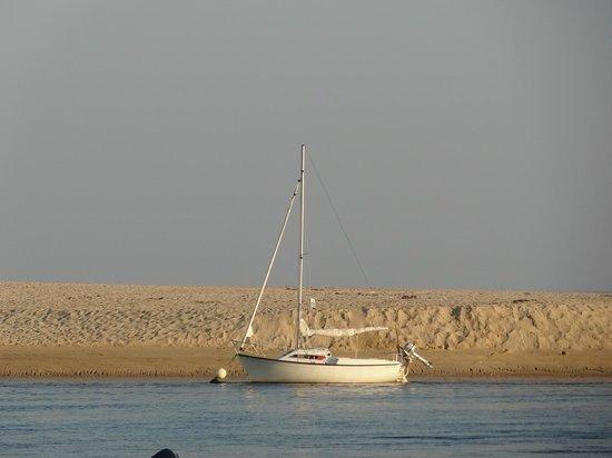 Camping du Letty : La dune de la Mer Blanche