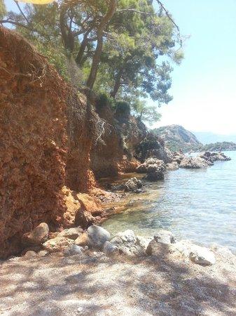 Villa Turk Apartments: Gemiler Beach