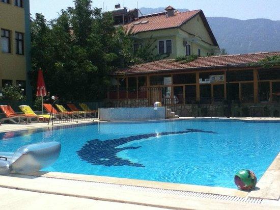 Villa Turk Apartments: Pool area