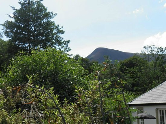 Kilmichael Country House Hotel: View from garden