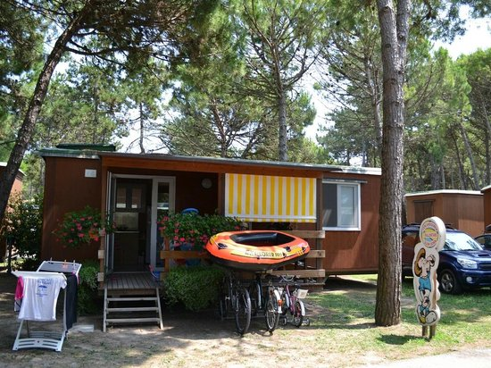 Camping Residence Il Tridente: Shalet