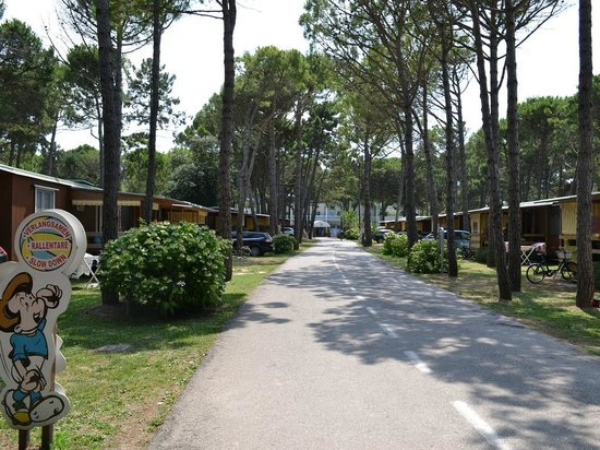 Camping Residence Il Tridente: Campeggio