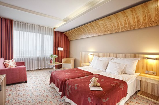 Hestia Hotel Europa: Superior room