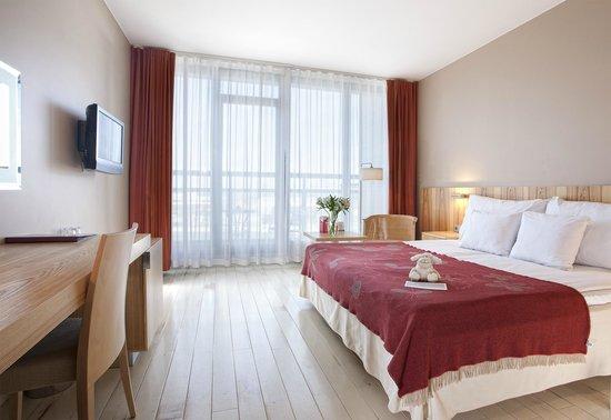 Hotel Euroopa: EU-class business room
