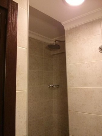 Megara Palace Hotel: Shower with no curtain, or anything else
