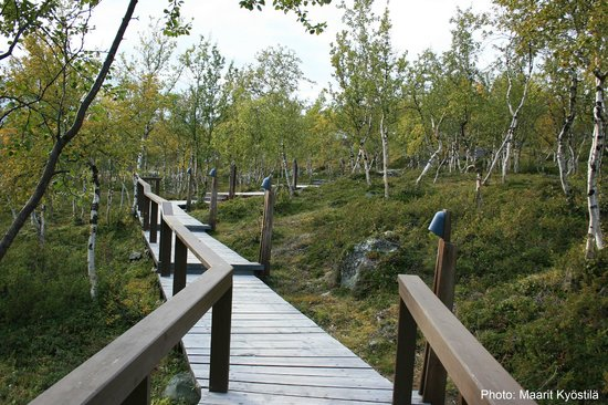 Kilpisjarvi Visitor Centre: Especially, in the autumn, the sights are fantastic!