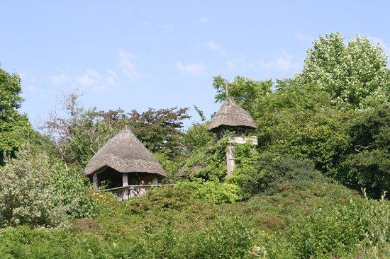 Furzey Gardens: Garden