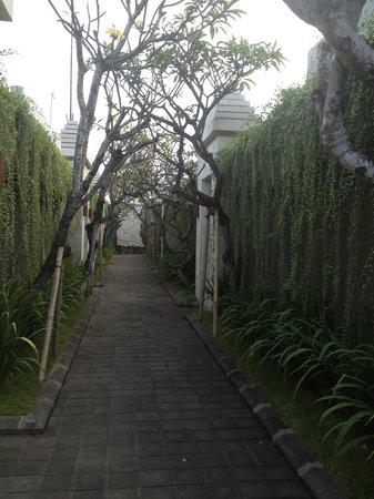 The Wolas Villas & Spa: Resort walkway