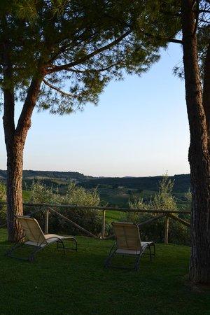 Fattoria Abbazia Monte Oliveto: Uitzicht tuin
