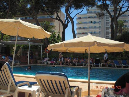 Hotel Riu Concordia: piscine