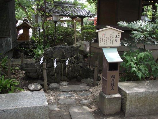 Chiba Shrine : 福授の亀岩