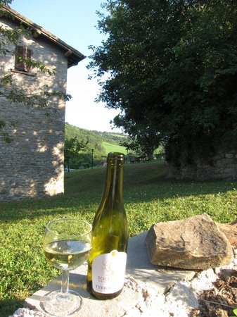 La Tavola Marche Agriturismo & Cooking School: Beautiful peaceful location