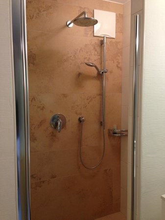 Hotel Sonnleiten: Amazing shower in single room.