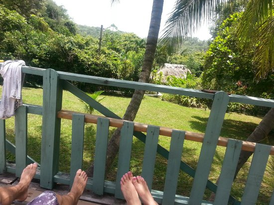 Maya Mountain Lodge: View from the pool