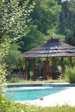 Mas de Capelou : Pool view