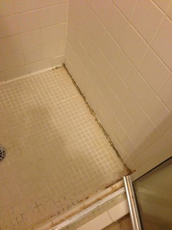 Holiday Inn Express Ridgeland - Jackson North Area : dirty shower