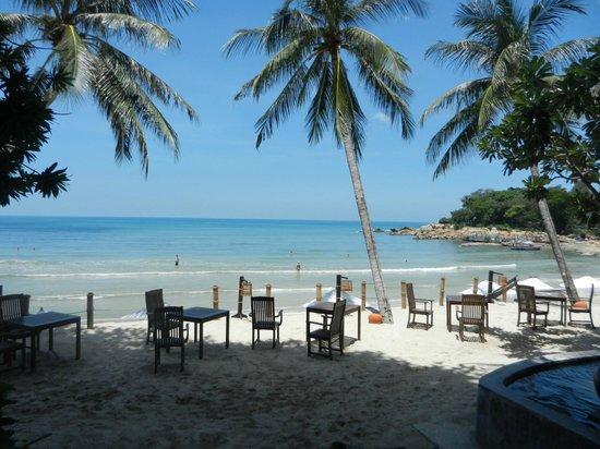 Samui Paradise Chaweng Beach Resort Spa Wow