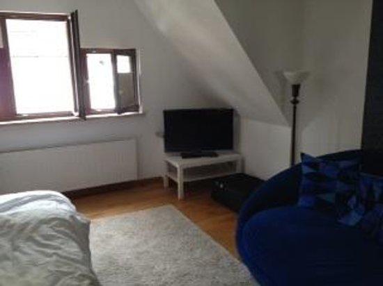 Hotel Villa Vinum Cochem: moderner Fernseher