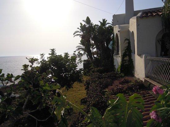 Paco Residence: dal giardino