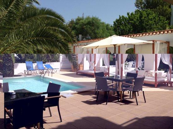 Sunset Oasis Ibiza : Pool