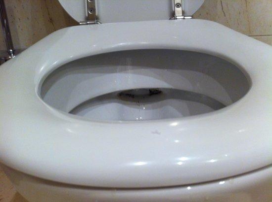 Ria Park Hotel&Spa: Suciedad en el WC
