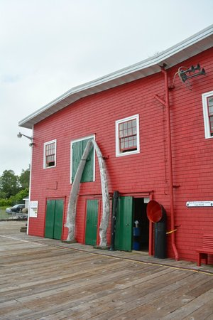 Fisheries Museum of the Atlantic: Outside The Museum