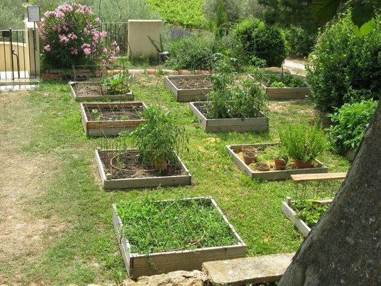 Le Mas de la Lause: jardin de Christophe